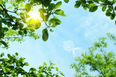 紫外線対策グッズのおすすめ3選!日焼け止めの種類とメリット・デメリットは?