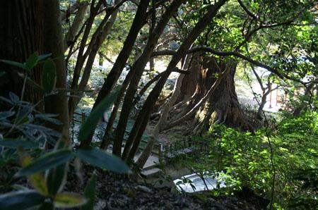 水戸の萩まつり2018年の日程や見どころは?偕楽園や周辺おすすめスポットも紹介!