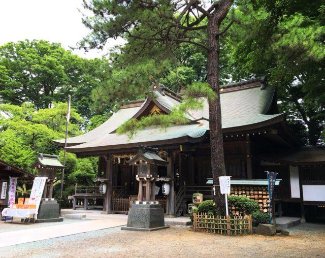 前鳥神社の初詣2019の混雑予想や駐車場は?気になる3つの御朱印も紹介!