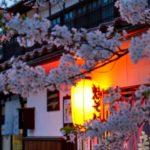 がいせん桜のお花見2018!見頃・開花はいつ?人気の桜まつりも紹介!