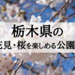 2018年栃木のお花見・桜を楽しめる公園5選を見ごろ順に紹介!