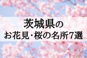 2018年茨城のお花見・桜の名所7選!桜まつりの開催順に紹介!