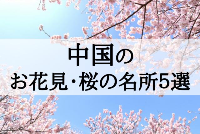 【2018年】日本各地の定番&おすすめ花見・桜の名所まとめ!今年の花見はどこへ行く?