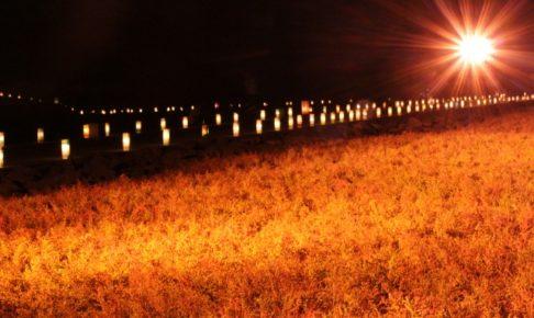 シチメンソウ群生地(佐賀)の紅葉2018の見ごろの時期はいつ?ライトアップも紹介!