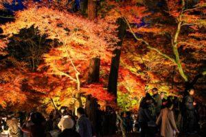 永源寺(滋賀県)の紅葉2018!見頃の時期と見どころは?ライトアップ情報も紹介!