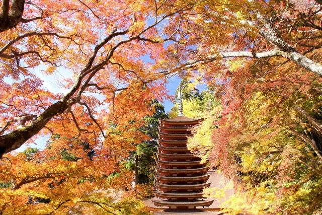 談山神社の紅葉2018!見ごろの時期は?ライトアップ情報&周辺おすすめスポットも紹介!