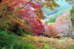 吉野山の紅葉2018!見ごろの時期は?周辺の世界遺産も紹介!