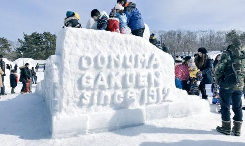 大沼函館・雪と氷の祭典2019の日程やイベントは?道の駅なないろ・ななえも紹介!