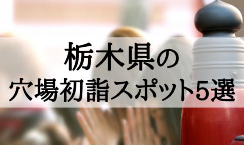 【2019年】栃木県の穴場初詣スポット5選!有名どころに負けない魅力がいっぱい!